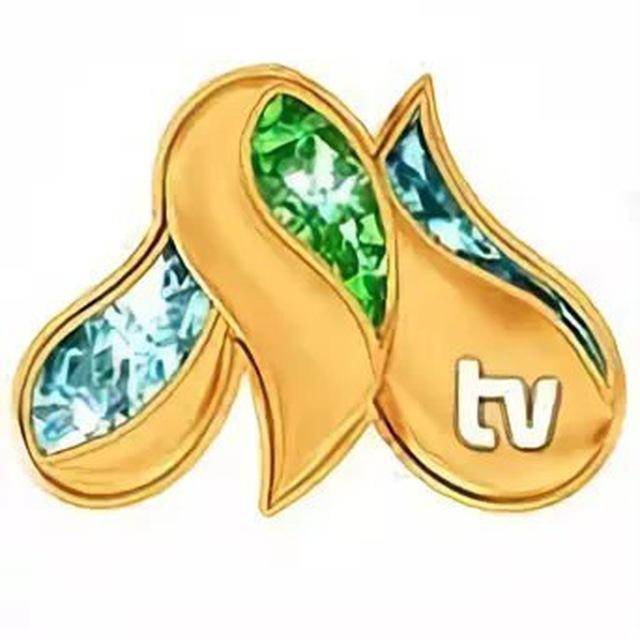milliy tv programmasi bugungi
